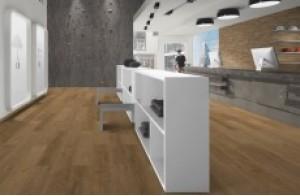 Коллекция Laminate Flooring 33 class (Россия)