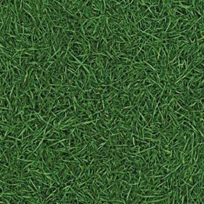 Линолеум IVC Neo Grass 25