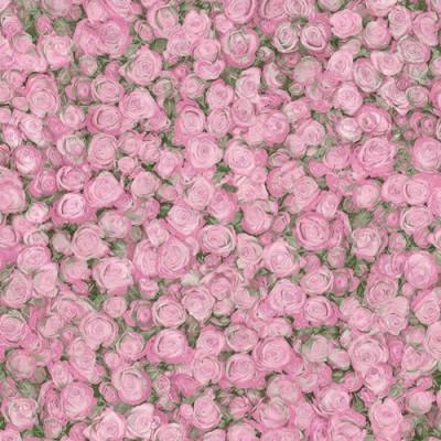 Линолеум Tarkett Fleur Rose 2