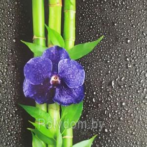 Панели ПВХ Dekostar Фьюжн Орхидея 1-351, 2.7 м