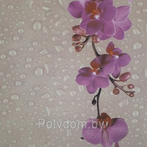 Панели ПВХ Dekostar Стандарт New Дикая орхидея -136, 2.5 м